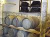 albanija-vinarna