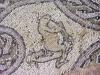 makedonija-ohrid-mozaik