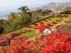 Madeira-Botanični vrt