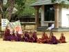 Ko bom velik bom budistični menih na Šrilanki