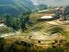Vietnam - Sapa in riževe terase