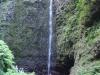 Madeira-Calderao verde