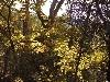 olympos-okolica-063.jpg