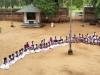 Šrilanka-sveto drevo