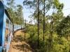 Šrilanka-z gorskim vlakom čez hribe