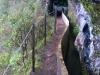 Pohodniška Madeira, sprehod ob levadi