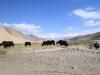 svilena-cesta-kitajska-karakorum-highway