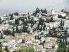 Generalife-Pogled na sosednji hrib Albaicin