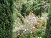 Generalife-povsod same rože