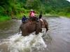 tajska-jahanje-slona