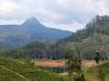 01-Šrilanka-Adamo vrh-vreden spoštovanja