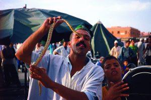 Maroko-Marakesh-krotilec kač