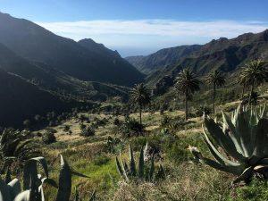 Atraktivni Tenerife in Gomera