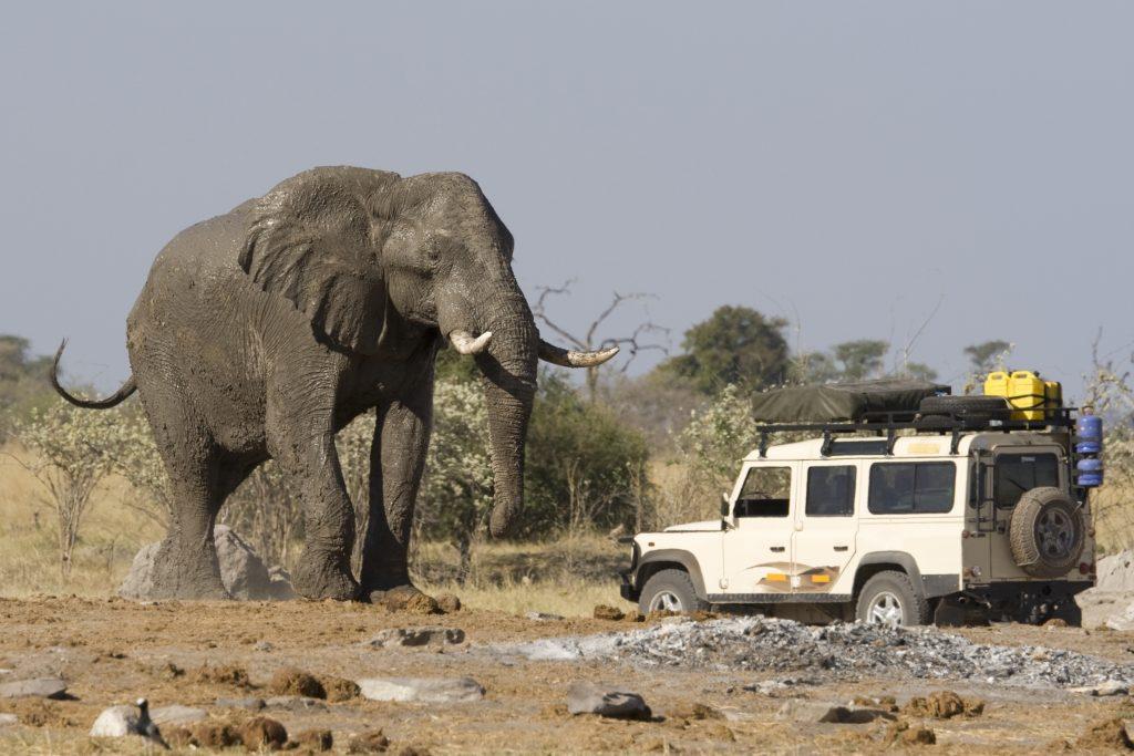 elephant car 1 1024x683 - Zakaj potujemo?