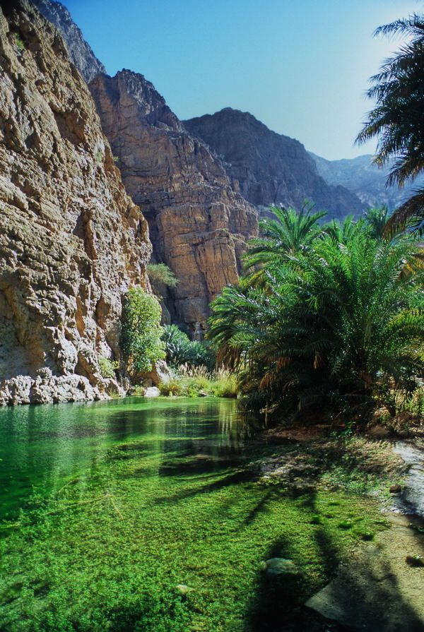 Omanska pravljica