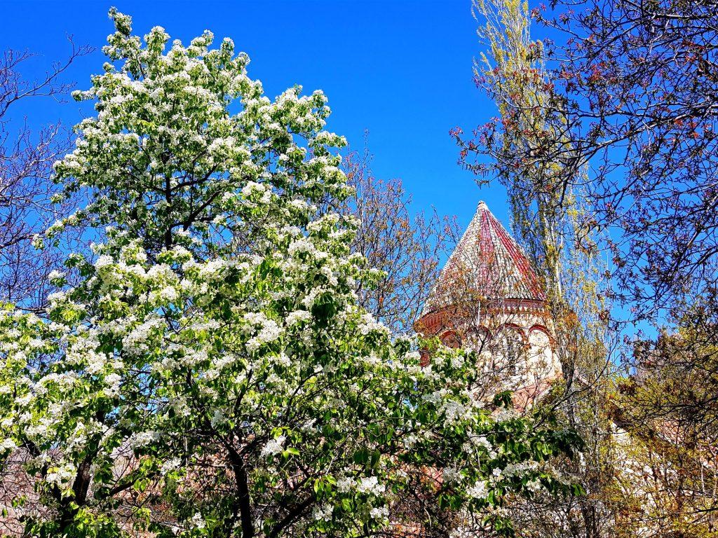 04-vzhodna Turčija-Išhan-gruzijska katedrala sredi ničesar