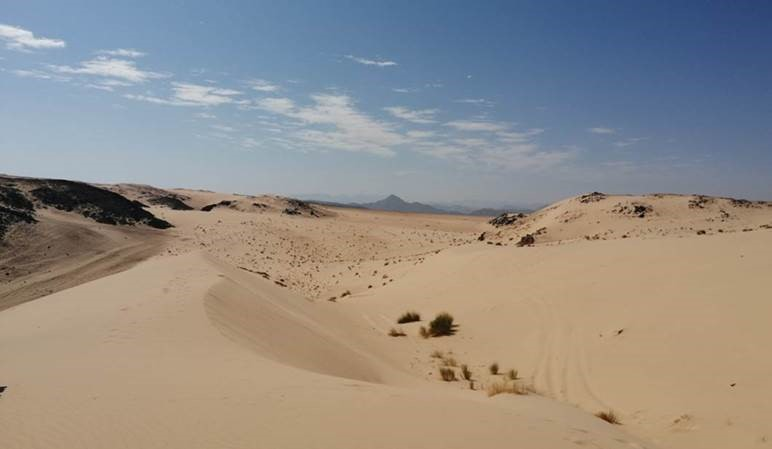 12 - Od Faraonov do Beduinov