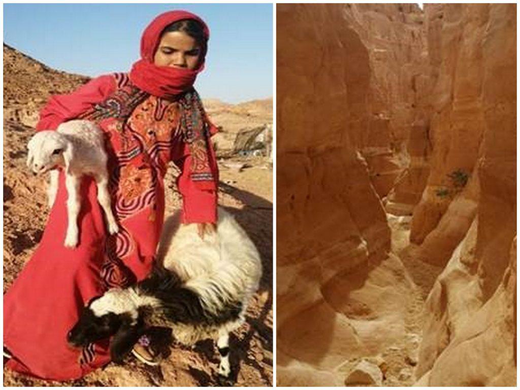 kolaž3 1024x768 - Od Faraonov do Beduinov