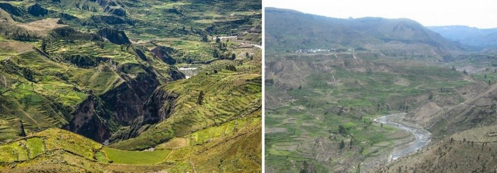 14 Kanjon Colca 1024x358 - Peru - Med potomci Inkov