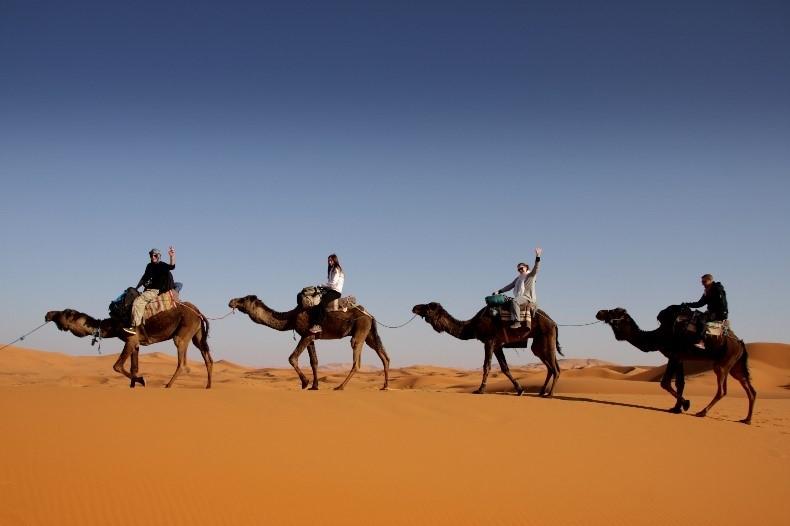Maroko jahanje kamel v puščavi - Potovanja - korak za korakom nazaj k sebi