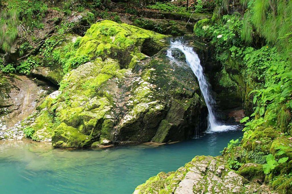 Slovenija national park risnjak 1024x683 - V deželi medveda za TURISTIČNE BONE (Loški Potok in Notranjski Kras)