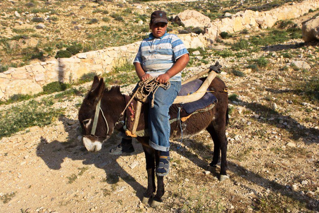 A3B9626 1024x683 - Jordanska pravljica - scenarij potovanja