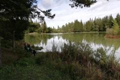 bloško-jezero-2