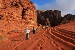 06-Rozna-puscava-Wadi-Rum