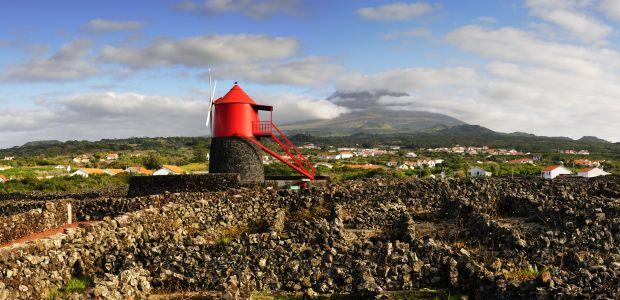 Azores-Pico-vinogradniška kultura