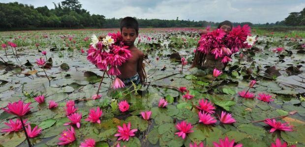 Bangladeš-Dežela rek