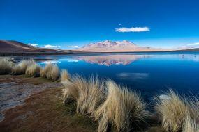 Bolivija-Altiplano