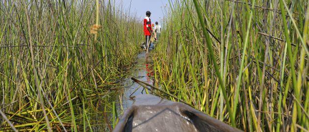 Botswana-Okavango Delta