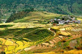 Butan-rodovitne doline