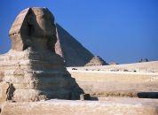 Egipt-Svinga