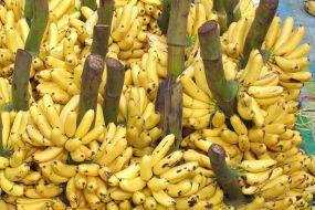 Ekvador-Otavalo-tržnica banan