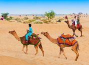 Indija-puščava-Thar