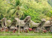 Indonezija-Sulawesi-tana-toraja
