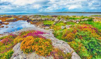 Irska pokrajina