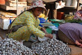 Kambodža Batambang bazar