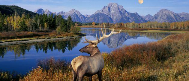 Kanada-NP-Grand Teton