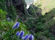 Madeira-Čudovita pokrajina