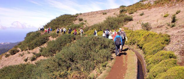 Pohodniška Madeira-Sprehod po levadi
