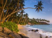 Mirissa Beach, Sri Lanka, Asia, by panoramic landscape and travel photographer Matthew Williams-Ellis