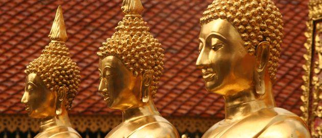 Tajska-Budine podobe