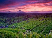 Indonezija - Bali-pokrajina
