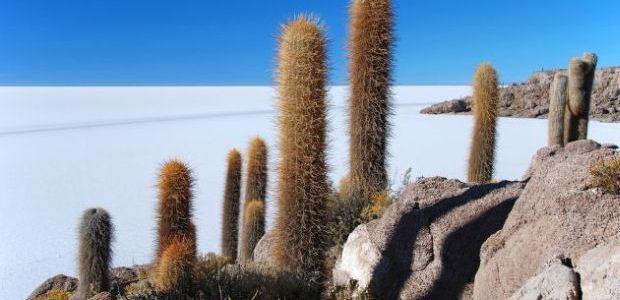 Bolivija-Lagoon de Uyuni