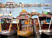 Indija-Srinagar, jezero Dal