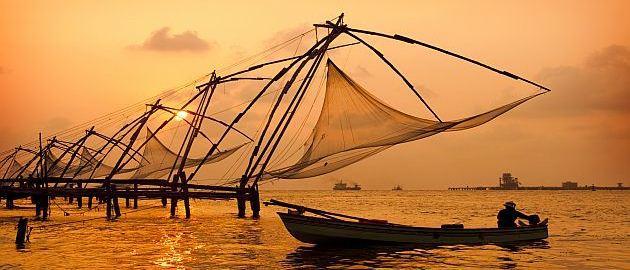 Južna Indija-Kitajske mreže