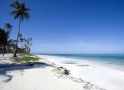 Zanzibar-Tropska plaža