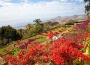 Madeira - Botanični vrt